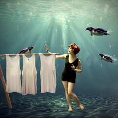 Come on darlings, it's almost dry ! (Martine Roch) Tags: animal lady vintage square funny underwater dream surreal humour fantasy laundry photomontage imagination vest pinguins petitechose martineroch truthandillusion