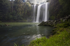 Whangarei Falls, New Zealand (Ashley Daws) Tags: new sky cliff cloud lake green fall water grass rock river waterfall pond rocks long exposure ray falls zealand filter nd northland kiwi whangarei singh varinduo