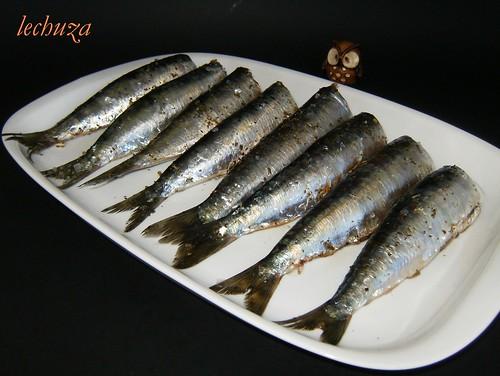 Sardinas con brona-sardinas crudas