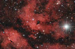 IC1318 - The Sadr Butterfly (zAmb0ni) Tags: sky night butterfly stars ic long exposure cluster telescope nebula astrophotography astronomy sadr celestron 1318 ic1318