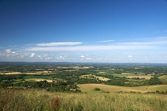Ditchling View