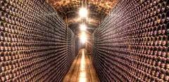 Hoy: Consejos para guardar el vino