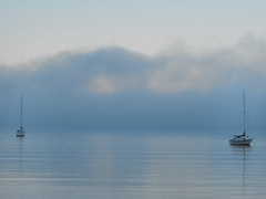 Yachts With Fog (Nic Temby) Tags: sea newzealand christchurch mist water fog boats bay boat still harbour yacht canterbury yachts governorsbay platinumheartaward