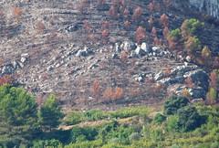 Rock design  /  Diseo de rocas (Benissiva Calling) Tags: mountain landscape rocks stones paisaje panasonic montaa rocas piedras dmcfz28