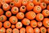 orange heads (ion-bogdan dumitrescu) Tags: singapore carrot carrots bitzi summer09 daucuscarotasubspsativus ibdp mg6559mod findgetty ibdpro wwwibdpro ionbogdandumitrescuphotography