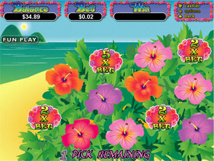 free Paradise Dreams gamble bonus game