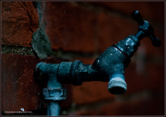 Saline decomposition in the water tap.. (14/50) (boboD90) Tags: autumn interesting nikon 5050 ipswich 50mmf18 d90 project50 unconvetional