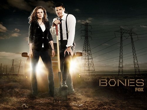 S5 Wallpaper by Bones Picture Archive.