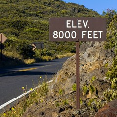 8,000 feet and counting as you descend down from the Haleakala Summit.