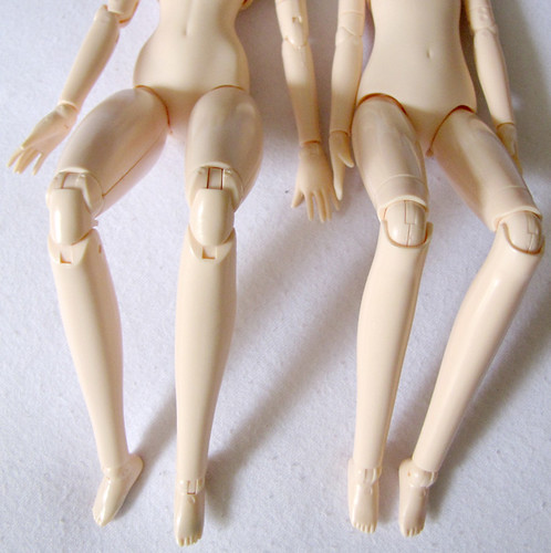 Obitsu Comparison - Knees