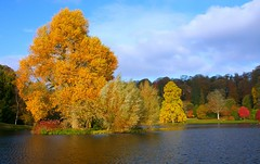 On Golden Pond (Nala Rewop) Tags: autumn trees lake colors golden colours stourhead nationaltrust stourton excapture goldenvisions