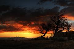 Happiness in Solitude (Christopher W Gilbert) Tags: camping trees sunset red sun storm mountains color tree love nature silhouette yellow night clouds canon landscape outdoors colorado solitude happiness lakegeorge foliage 7d recreation wilderness hdr dsl contemplation parkcounty atease coloradostateparks canondsl elevenmilestatepark spinneymountain f282470