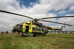 IMG_4323 (Aleksei Smoljanitski) Tags: kecskemet airshow 2010 repulonap
