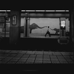 elephant kiss (*setsuna) Tags: blackandwhite bw film station japan metro osaka neopan400 midousuji rolleicord   doubutsuenmae