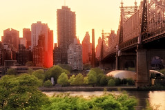 manhattanhenge & the 59th street bridge (mudpig) Tags: nyc newyorkcity sunset ny geotagged glow queens eastriver lic queensborobridge rooseveltisland hdr longislandcity manhattanhenge 59thstreetbridge mudpig stevekelley