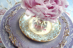 Target Tuesday: Bud Vases (such pretty things) Tags: show china old pink flowers wedding party baby glass floral vintage table gold aqua place antique lavender peony fabric tuesday target vase romantic plates bud chic dishes bridal setting peonies entertaining arranging shabby barkcloth