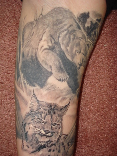 grizzly bear. ink. lynx. tattoos