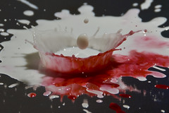 a_DSC_0919 (Charlie Pfeifler) Tags: pink blue red food orange white black green water colors yellow pen ball dark photo milk drops mixed globe nikon aqua purple teal flash sb600 drop spray clear drip coloring laser crown setup dye splatter transistor trigger hiviz splashes highspeedphotography
