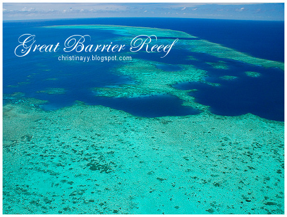 Cairns: Great Barrier Reef