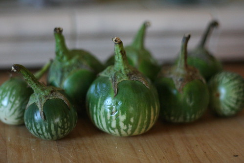 Thai Eggplants