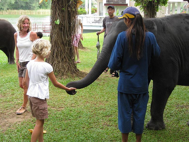 Hotel Elephant 02