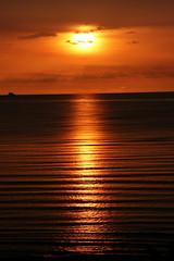 [フリー画像] [自然風景] [夕日/夕焼け/夕暮れ] [橙色/オレンジ] [水平線/地平線] [海の風景]      [フリー素材]
