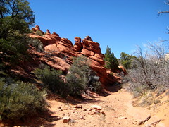 Capitol Reef National Park, Upper Muley Twist Canyon, Hoodoos (darthjenni) Tags: trip travel red vacation white nature rock stone landscape outdoors utah sandstone colorado desert plateau hike trail canyonlands geology escalante formations geological darthjenni