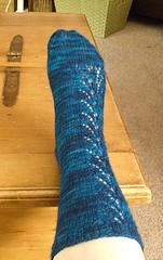blue rose 1 (phidias_bagel) Tags: socks knitting knitty blackrose