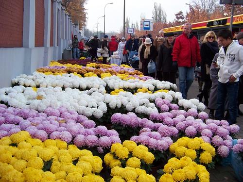 Nhiều bến xe bus được đặt ngay cạnh cửa vào nghĩa trang. Tới nơi là dòng người ngược xuôi như trảy hội và những quầy hoa khiến người không có nhu cầu mua cũng phải dừng chân chiêm ngưỡng.