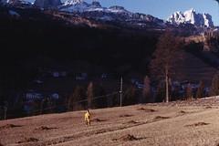 Scan10311 (lucky37it) Tags: e alpi dolomiti cervino