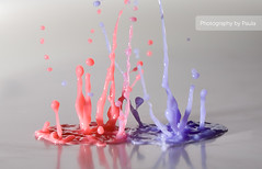 Pink & Purple (Morphicx) Tags: pink music blur color macro art netherlands colors closeup canon studio fun milk drops purple dancing action bokeh drop 100mm speaker droplet 5d splash deventer strobe ilovebokeh strobist bokehwhores bokehwhore