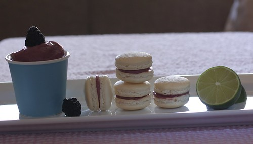 backlit macarons