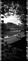 317 Delta100 15 (rubbernglue) Tags: sprocketrocket sprocketholes ilforddelta ilford sweden sverige svartvit bw blackandwhite bwfp analog analogexif filmphotography filmexif 2016 allmycamerasproject