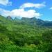 Mt. Mouaroa and Opunohu Bay from Belvedere