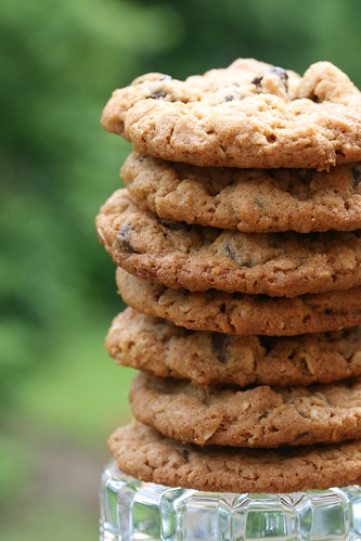 Food Librarian - National Chocolate Chip Day, May 15th