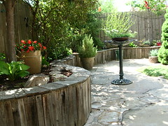 Curved Wooden Wall (boisebluebird) Tags: wood flowers trees plants plant flower tree wall garden landscape design michael spring backyard boise patio recycle retainingwall landscapedesign toolson boisegardens michaeltoolson boisebluebirdcom httpwwwboisebluebirdcom boiselandscaping boisegardener