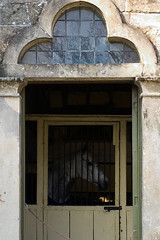 wednesday morning naglog (dr_loplop) Tags: door horse stone grey lights bars arch doorway leaded stable lintel bolted filly mottled nag aceofclubs pilasters fanlight cusped