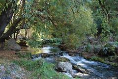 Maraetotara Falls - Hawke's Bay - New Zealand 050 (Julien | Quelques-notes.com) Tags: newzealand hawkesbay maraetotarafalls