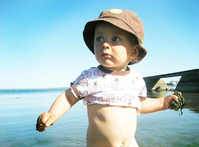 nils i sjön
