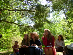 Listening In (London Permaculture) Tags: garden design farming devon agriculture edible sustainable permaculture totnes dartington forestgarden foodproduction foodforest dartingtonestate agroforestryresearchtrust