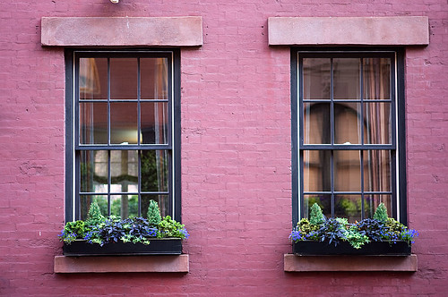 windows-with-flower-boxes