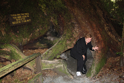 Sue goes through Natures Underpass