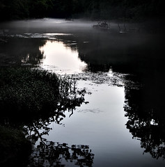 Mist on the Niangua in Missouri