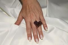 IMG_1172 (erikadefreitas) Tags: anillos