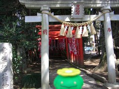 Skiploom in Mito, Ibaraki 24 (Tokiwa shrine) (Kasadera) Tags: toys figure pokemon mito  tokiwashrine skiploom    floravol hubelupf