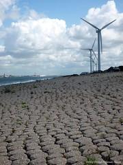 bij de Maasmond (dietmut) Tags: haven harbour nederland thenetherlands noordzee september northsea hafen 2009 maasvlakte niederlande zuidholland botlek europoort dietmut