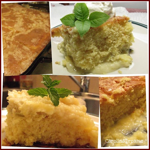 Rhubarb Cake Yumminess