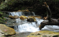Water in the creek nearby (Moores Springs, North Carolina, United States) Photo