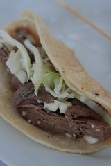 Ealings Park - shredded meat tacos