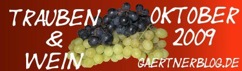 Garten-Koch-Event Oktober 2009: Trauben & Wein